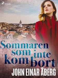 Sommaren som inte kom bort (e-bok) av John Eina