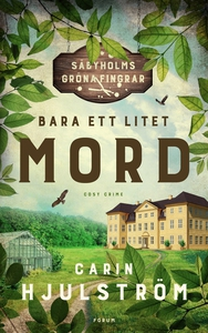 Bara ett litet mord (e-bok) av Carin Hjulström