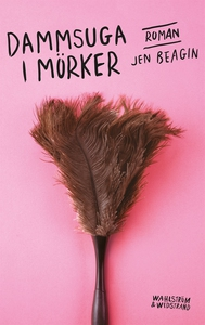 Dammsuga i mörker (e-bok) av Jen Beagin