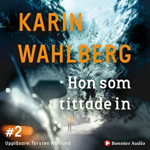 Hon som tittade in (ljudbok) av Karin Wahlberg