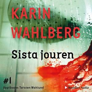 Sista jouren (ljudbok) av Karin Wahlberg
