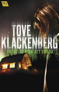 Påtaglig risk att skada (e-bok) av Tove Klacken