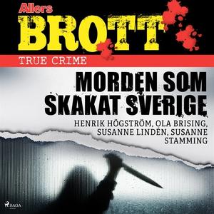 Morden som skakat Sverige (ljudbok) av Ola Bris