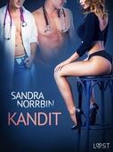 Kandit - eroottinen novelli