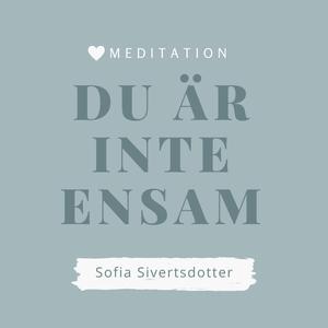 Du är inte ensam - meditation (ljudbok) av Sofi