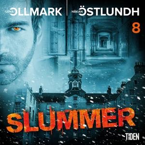 Slummer - Del 8 (ljudbok) av Håkan Östlundh, Le