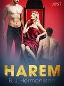 Harem - erotisk novell