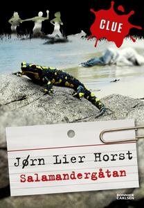 Salamandergåtan. CLUE 1 (e-bok) av Jørn Lier Ho