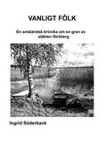 Vanligt fôlk: En småländsk krönika om en gren av släkten Ströberg
