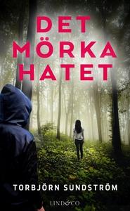 Det mörka hatet (e-bok) av Torbjörn Sundström