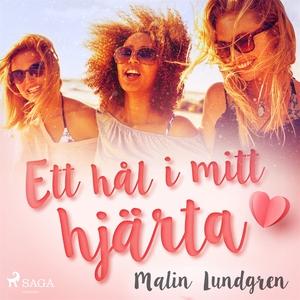 Ett hål i mitt hjärta (ljudbok) av Malin Lundgr