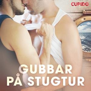 Gubbar på stugtur (ljudbok) av Cupido