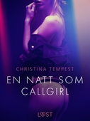 En natt som Callgirl - erotisk novell