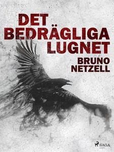 Det bedrägliga lugnet (e-bok) av Bruno Netzell