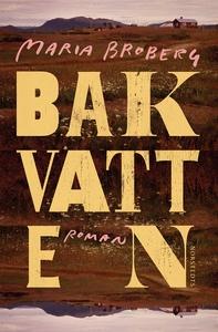 Bakvatten (e-bok) av Maria Broberg