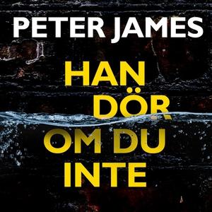 Han dör om du inte (ljudbok) av Peter James