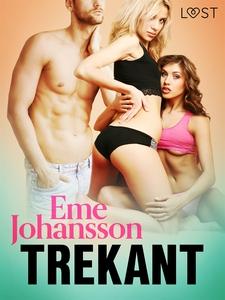 Trekant - erotisk novell (e-bok) av Eme Johanss