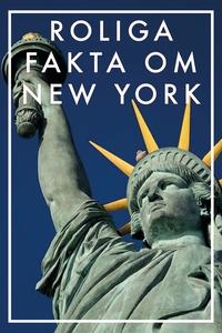 Roliga fakta om NEW YORK (Epub2) (e-bok) av Nic