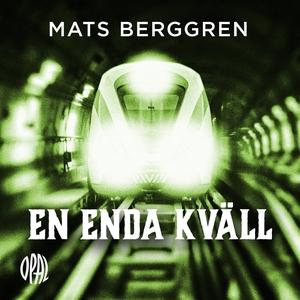 En enda kväll (ljudbok) av Mats Berggren