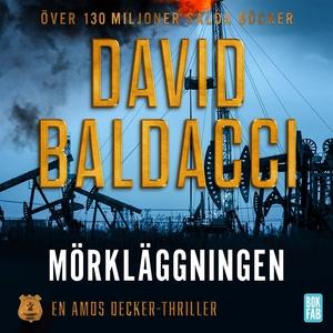 Mörkläggningen (ljudbok) av David Baldacci
