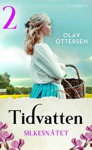 Silkesnätet: En släkthistoria (e-bok) av Olav O