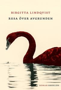 Resa över avgrunden (e-bok) av Birgitta Lindqvi