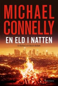 En eld i natten (e-bok) av