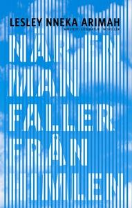 När en man faller från himlen (e-bok) av Lesley