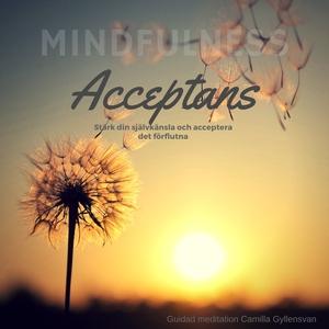 Acceptans (ljudbok) av Camilla Gyllensvan