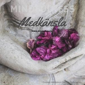 Medkänsla (ljudbok) av Camilla Gyllensvan