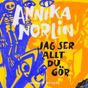 Jag ser allt du gör (ljudbok) av Annika Norlin