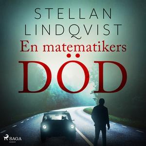 En matematikers död (ljudbok) av Stellan Lindqv