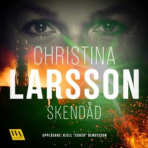 Skendåd (ljudbok) av Christina Larsson