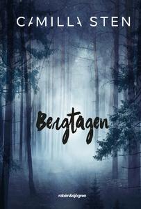 Bergtagen (e-bok) av Camilla Sten