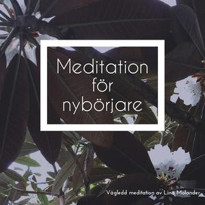 Meditation för nybörjare (ljudbok) av Lina Mola