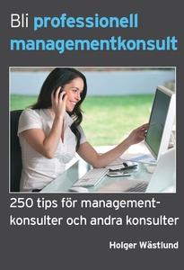 Bli professionell managementkonsult - 250 tips
