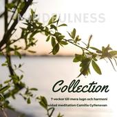Mindfulness Collection - 7 veckor till mer lugn och harmoni