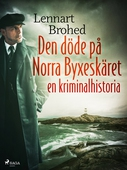 Den döde på Norra Byxeskäret: en kriminalhistoria