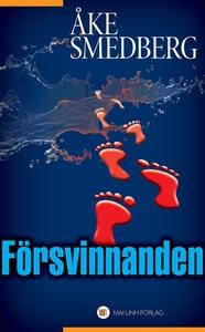Försvinnanden (e-bok) av Åke Smedberg