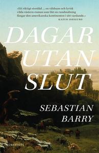 Dagar utan slut (e-bok) av Sebastian Barry