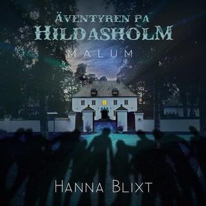 Äventyren på Hildasholm :  Malum (ljudbok) av H