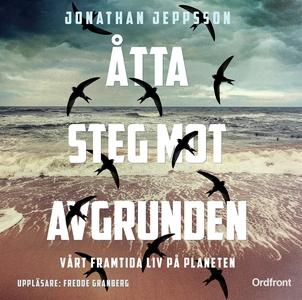 Åtta steg mot avgrunden (ljudbok) av Jonathan J