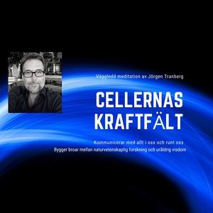 Cellernas kraftfält - meditation (ljudbok) av J