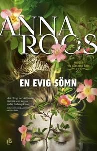 En evig sömn (e-bok) av Anna Roos