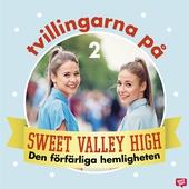 Tvillingarna på Sweet Valley High 2: Den förfärliga hemligheten