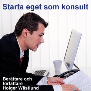 Starta eget som konsult - IT-konsult, PR-konsul