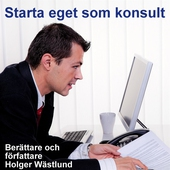 Starta eget som konsult - IT-konsult, PR-konsult, ekonomikonsult, byggkonsult m.m.