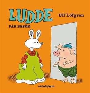 Ludde får besök (ljudbok) av Ulf Löfgren