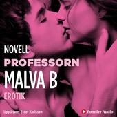 Professorn : en novell ur Begär