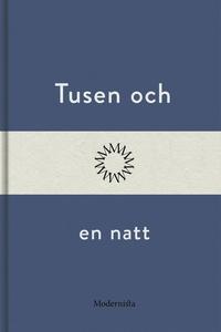 Tusen och en natt (e-bok) av Anonym